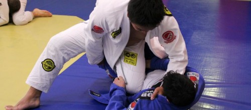 (Adults) Brazilian Jiu Jitsu